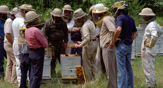 Beekeeper Group